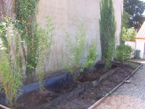 pépinière villeroy - arbres et arbustes rares - bambous rustiques